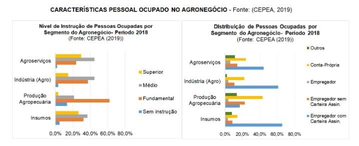 Gráfico - Características pessoal ocupado no agronegócio-min